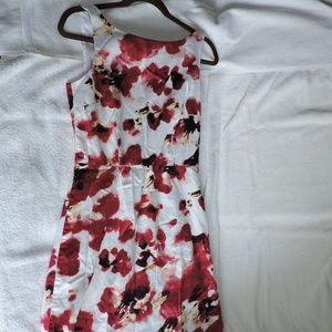 Ann Taylor Women's Poppy Floral Sun Dress